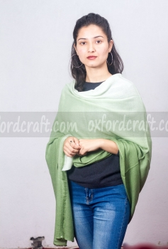 Cashmere Shaded Shawl